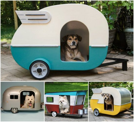 Dog Houses For Rescue Dogs