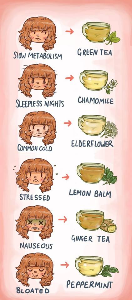 Herbal Teas and their Health Benefits