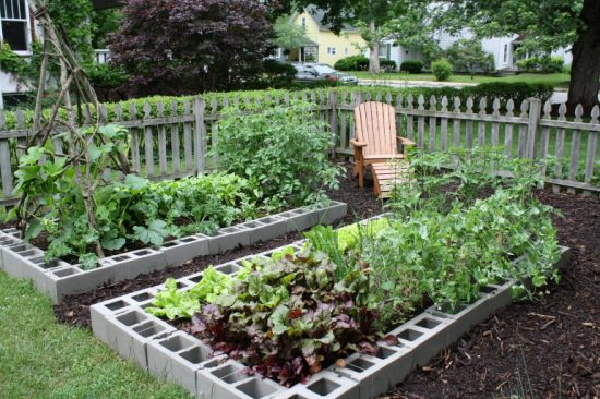 Raised Garden Bed Using Besser Or Cinder Blocks
