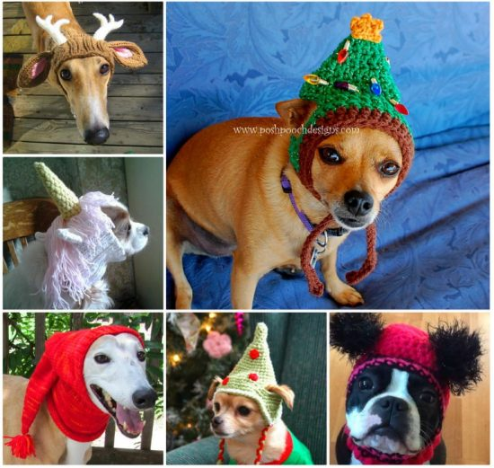 Crochet Dog Hat Pattern Ideas Best Collection Video Tutorial cc20db6748a