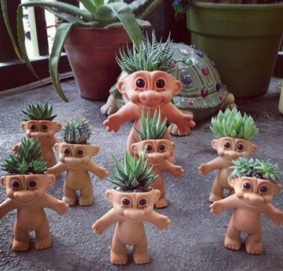 Troll Succulents The WHOot