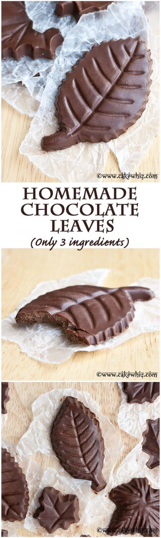3 Ingredient Chocolate Leaves