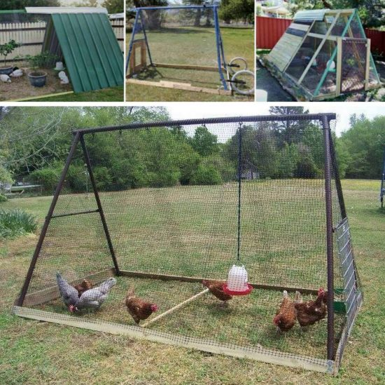 Chicken Coop Swing Set
