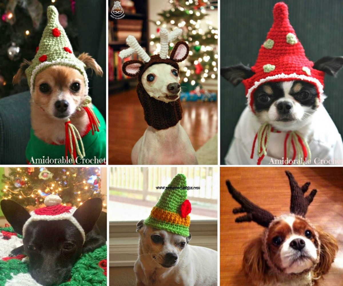 Crochet Dog Hats Free Patterns