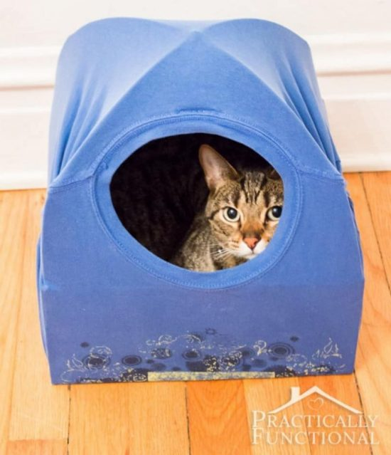 Super cute t shirt cat tent video tutorial the whoot for Diy cat teepee