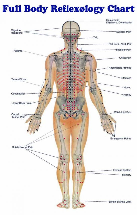 Full Body Reflexology Chart