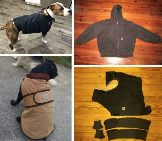 DIY Dog Coat Pattern Quick And Easy Project Video Tutorial Delectable Dog Jacket Pattern