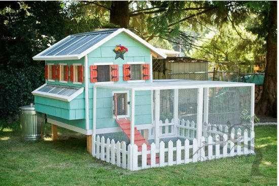 DIY Chicken Coop with Free Plans