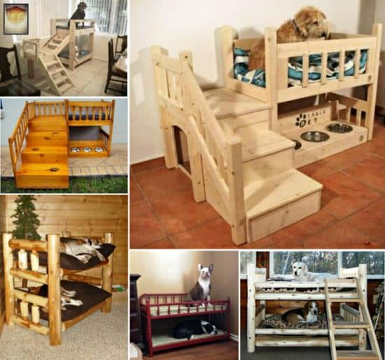 Dog bunk beds best ideas easy video instructions for Pet bunk bed gallery