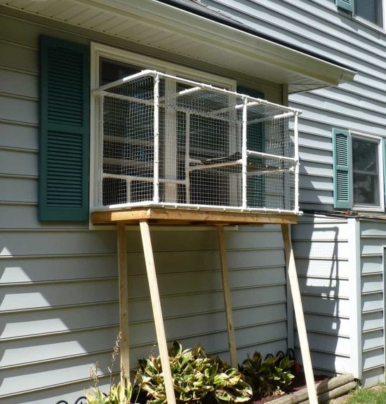 Screened Cat Porch