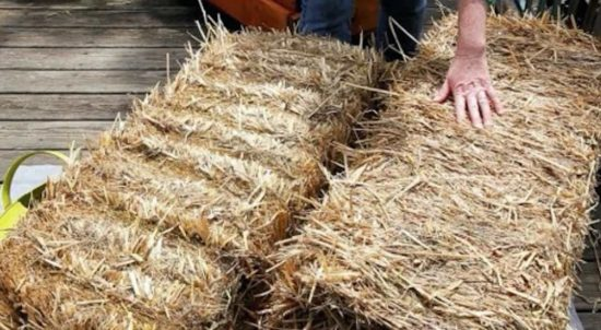 How To Condition A Straw Bale