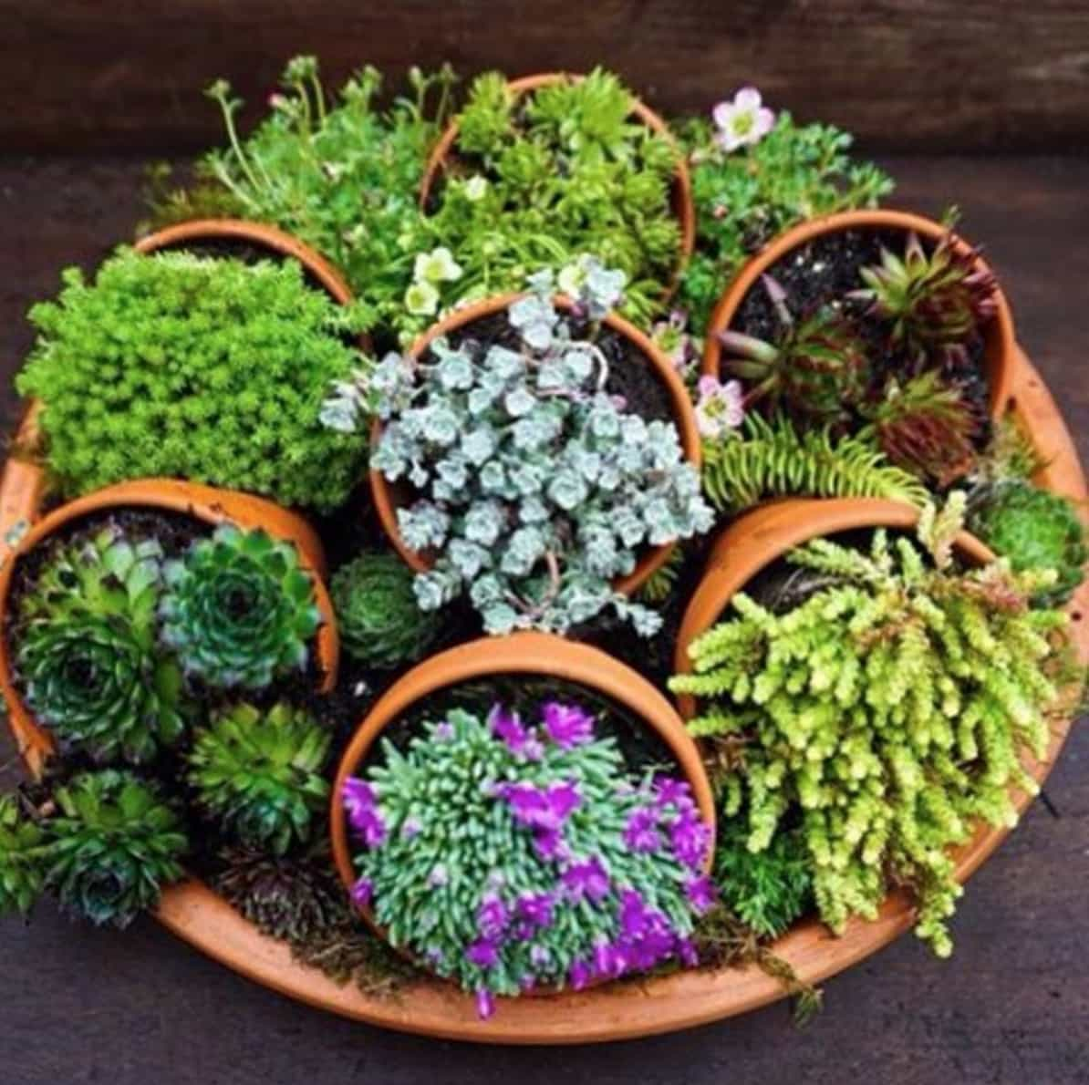 Clay Pot Planter Ideas You Ll Love This Inspiration