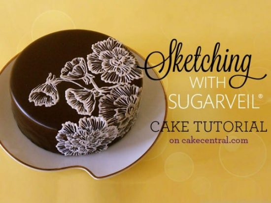 Sketching With Sugar Veil