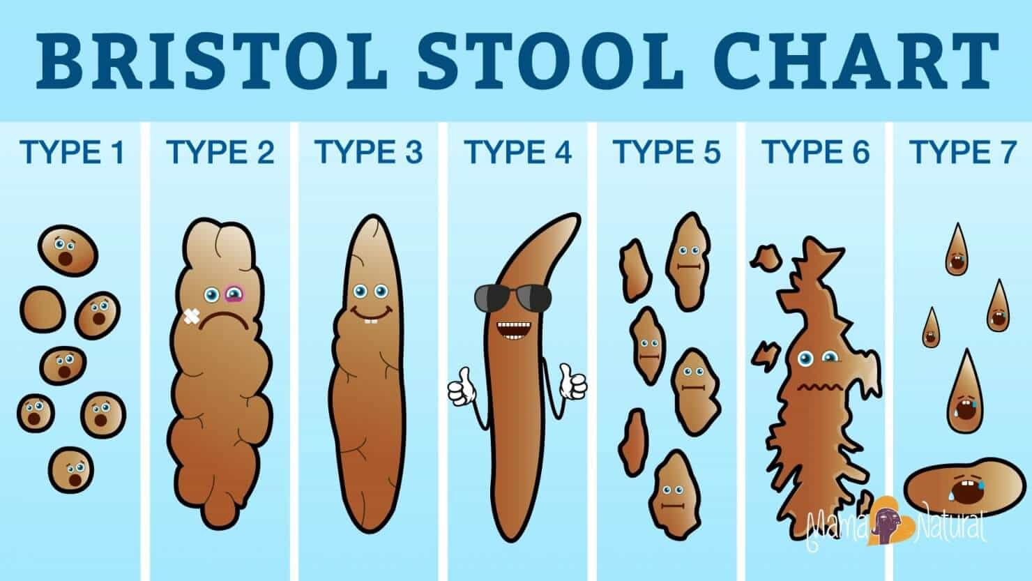 Find Out The Secrets Of The Bristol Stool Chart The Whoot