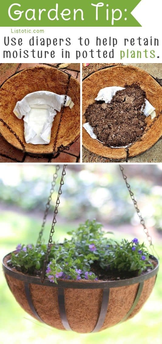 use-diapers-to-retain-moisture-in-potted-plants