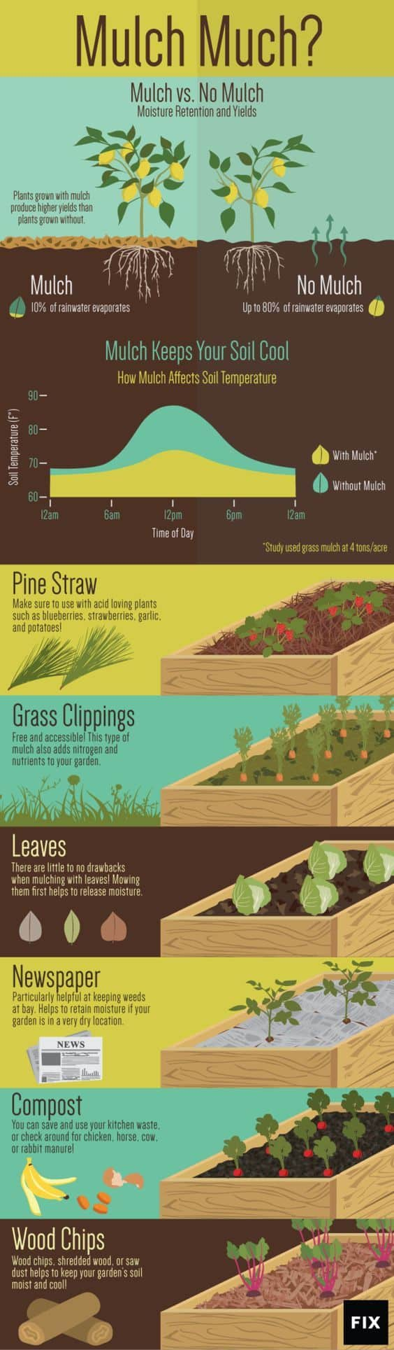 Mulch Infographic