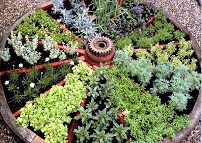 Wagon Wheel Design Herb Garden