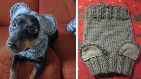 Knitted Dog Hats with Ears Easy Free Patterns b25f94b0d99