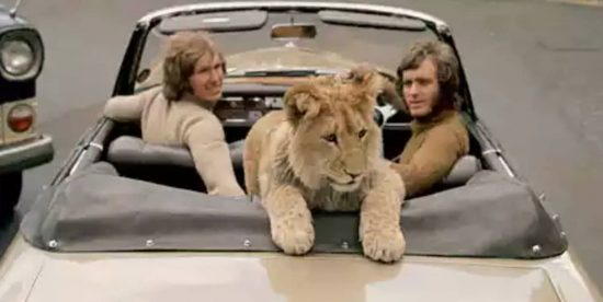 Christian The Lion Story