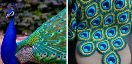 Crochet Peacock Blanket Free Pattern