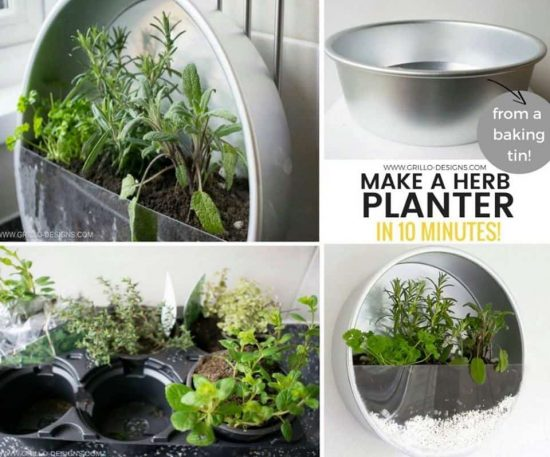 Baking Pan Herb Garden