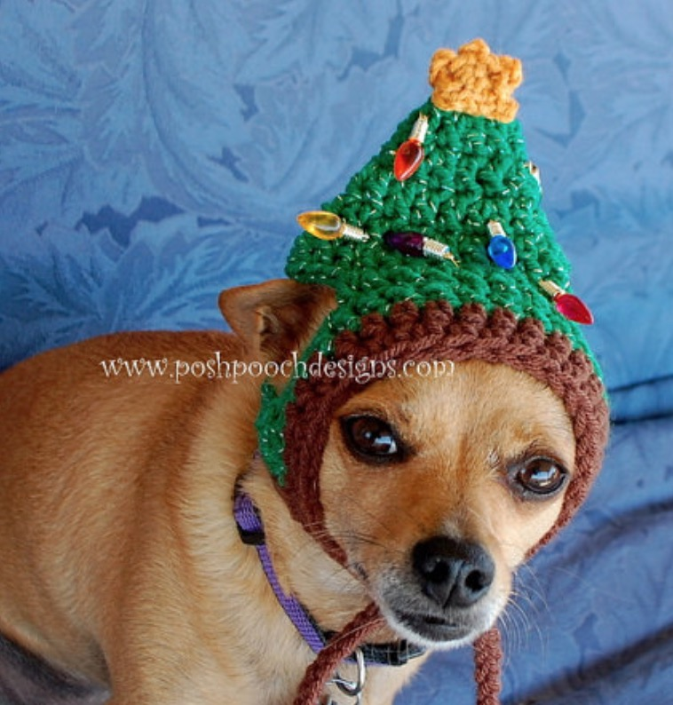 Crochet galilee booties pattern ideas that you will love crochet dog hat pattern ideas best collection ccuart Images