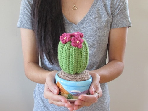 Fun Amigurumi Cactus Free Crochet Patterns - DIY Magazine | 375x500