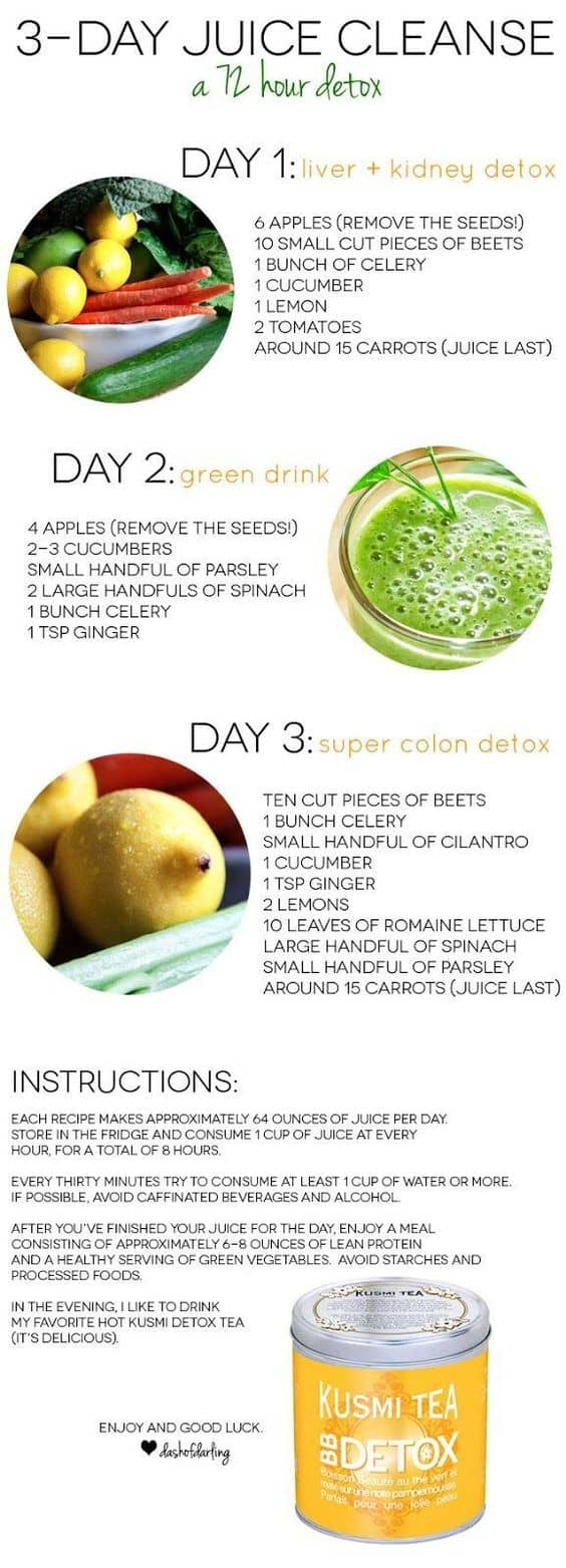 72 Hour Juice Cleanse Recipes