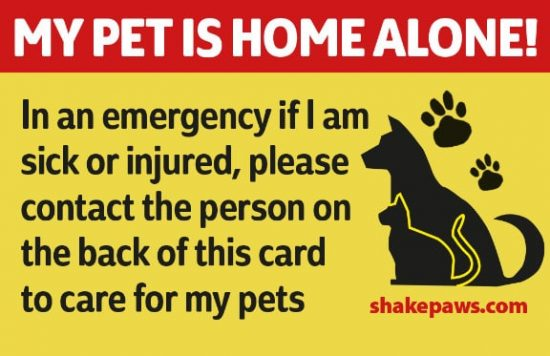 photograph regarding My Dog is Home Alone Card Printable called Doggy Dwelling On your own Card Is Ideal For Unexpected emergency Predicaments