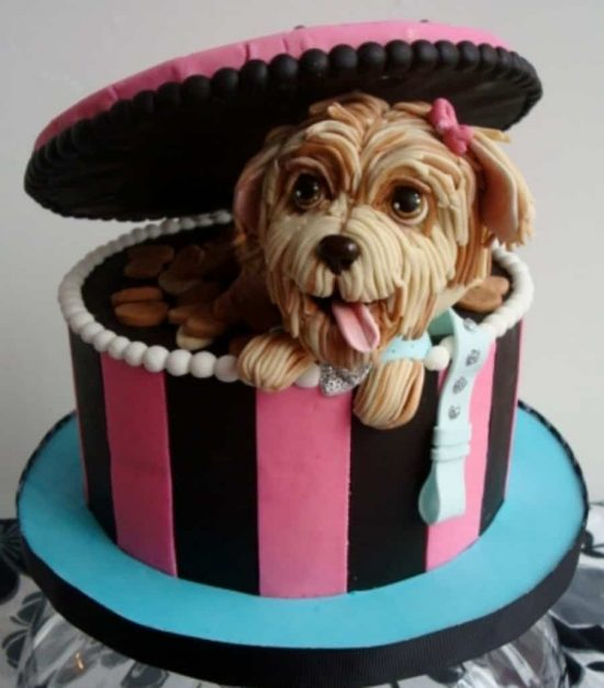 Recipes For Cakes That Dogs Can Eat