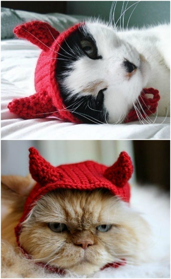 costume Pet Costumes hats for cats cat hat costume cat hat crochet cat hat animal hat cat knit cat hat cat costume Pet Clothing