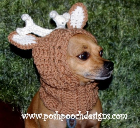 Crochet Dog Hat Pattern Ideas Best Collection Video Tutorial