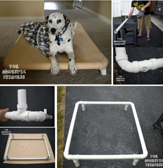 Homemade Dog Bed Pvc Pipe
