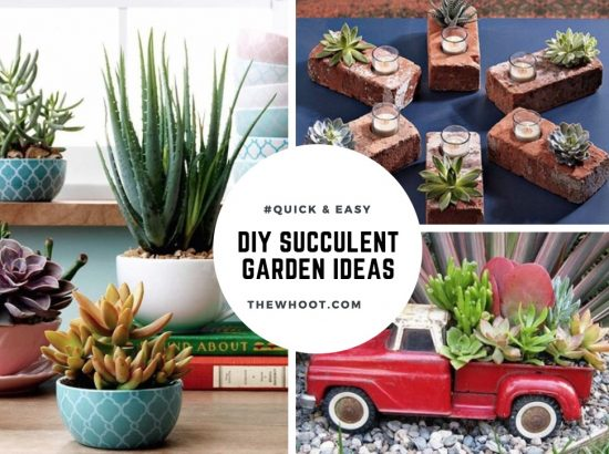 Succulent garden ideas lots of inspiration you will love advertisement sisterspd