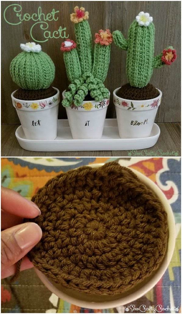 Crochet Cactus Patterns Best Ideas Video Instructions