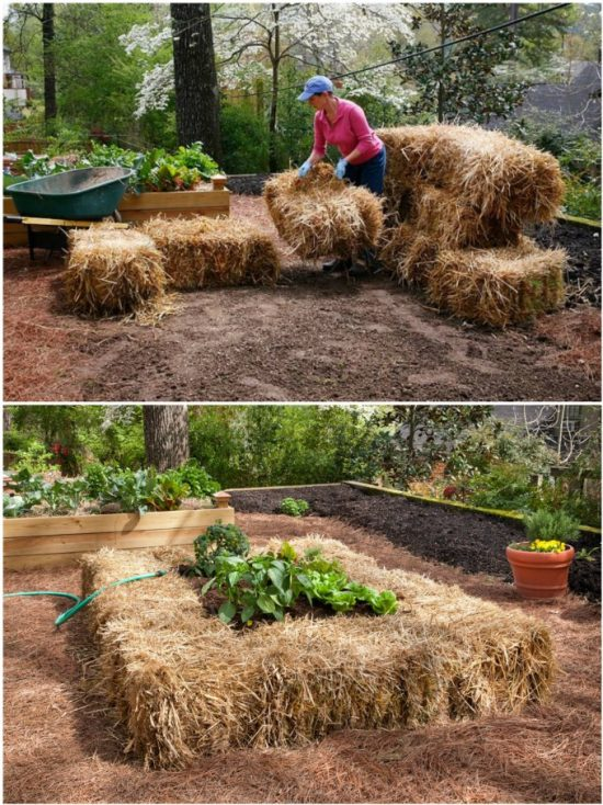 Straw Bale Gardening Techniques Youtube Video Instructions