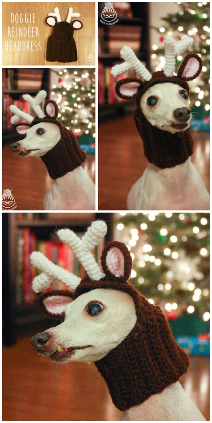 95d89288d91 Sara of Posh Pooch Designs has included a video tutorial to step you  through the pattern. It s super easy so you won t need any advanced crochet  skills.