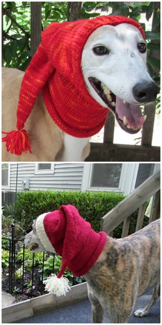 03084da3f74 Crochet Dog Hat Pattern Ideas Best Collection Video Tutorial