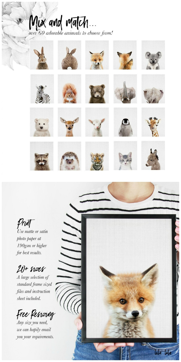 Baby Animal Prints For Nursery Ideas