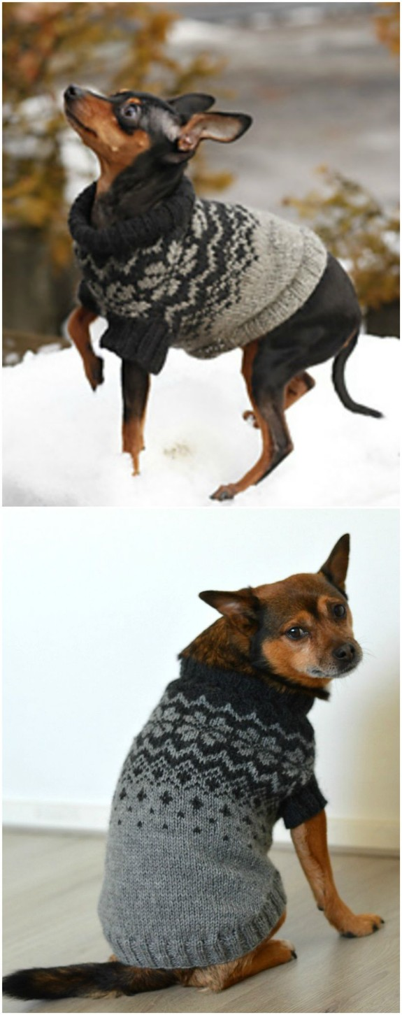 Knitted Dog Sweater Patterns You'll Love | The WHOot