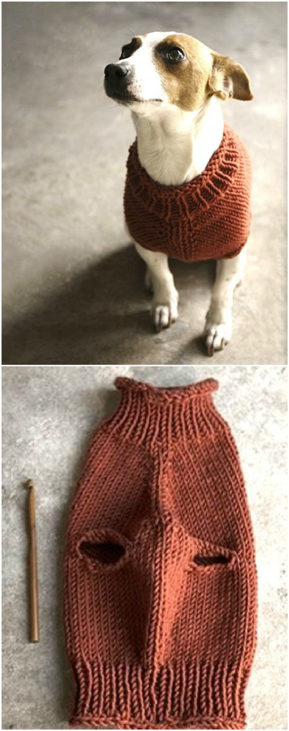 Knitted Dog Sweater Patterns You Ll Love The Whoot