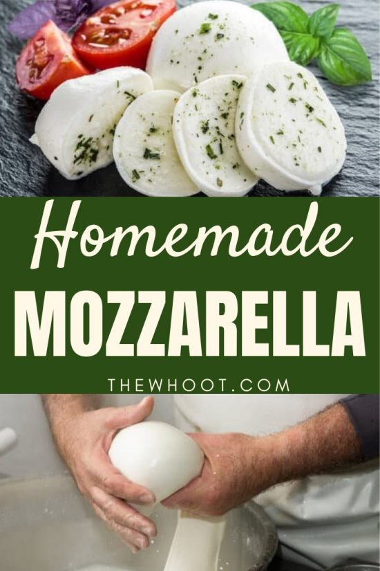 How To Make Mozzarella Cheese At Home The Whoot
