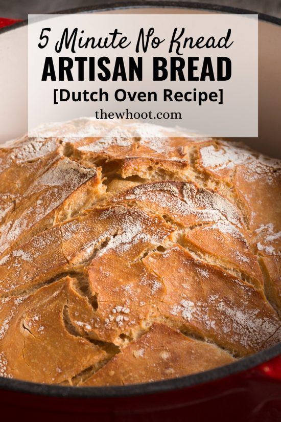5 Minute No Knead Artisan Bread Recipe | The WHOot